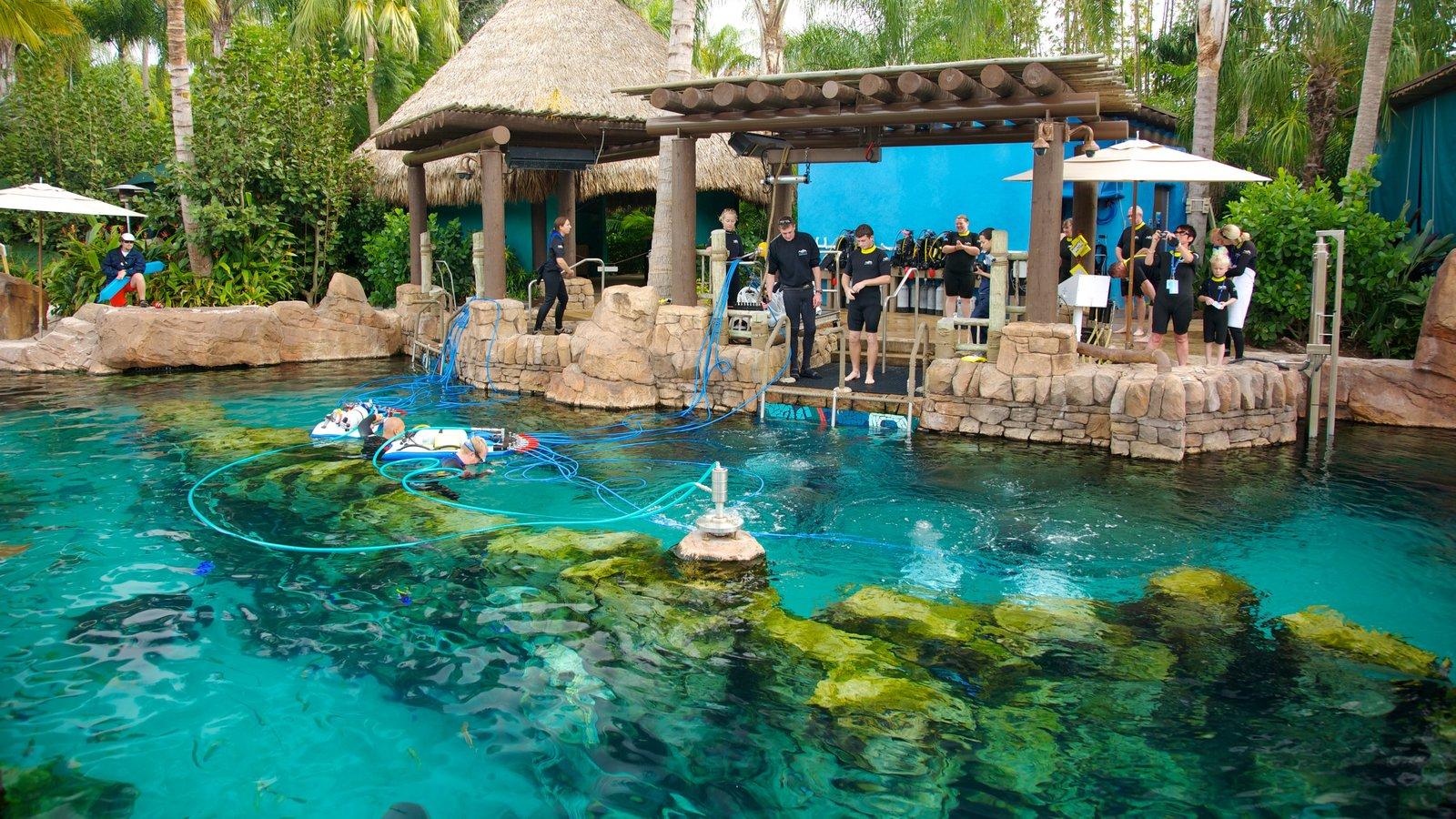 SeaWorld Orlando featuring rides