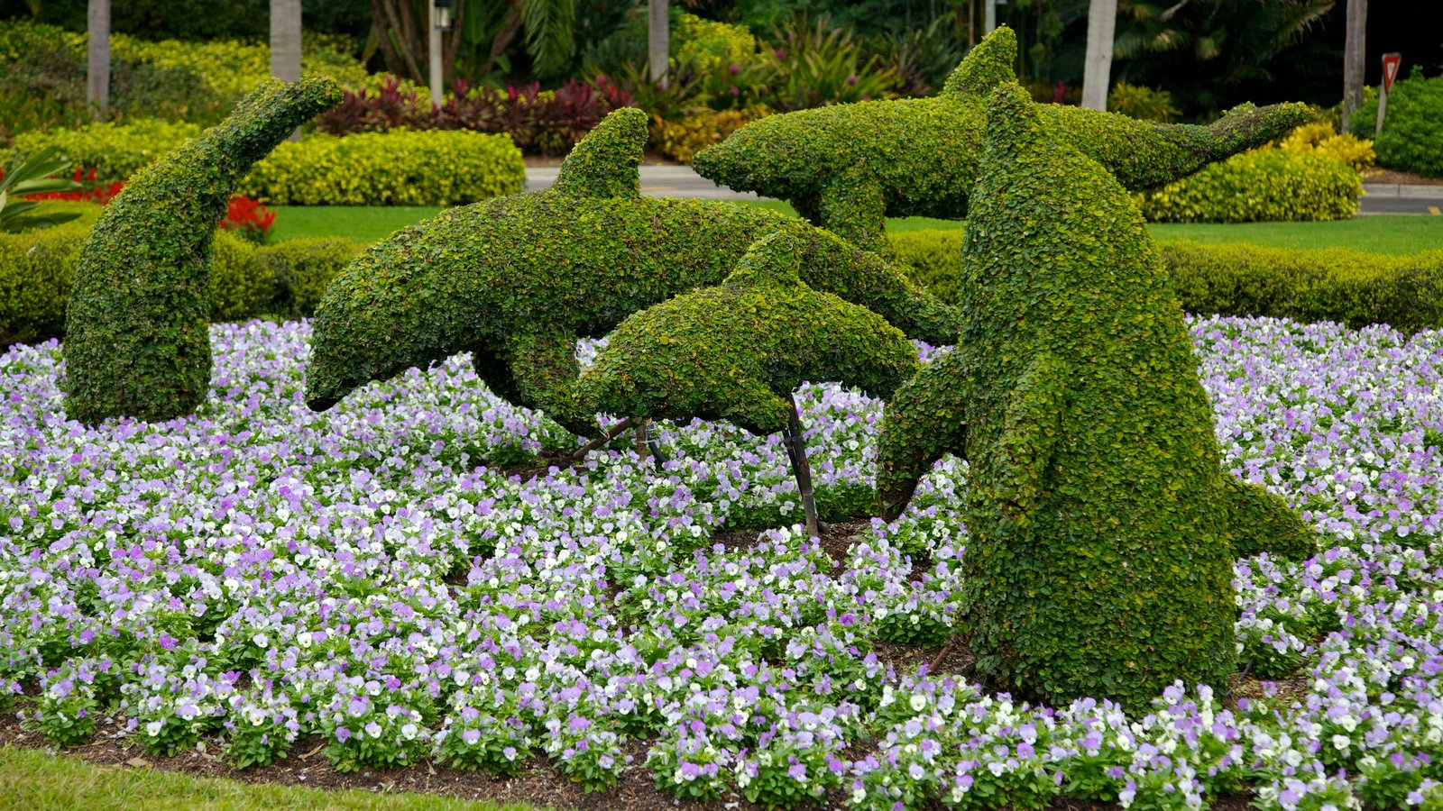 SeaWorld Orlando Showing Outdoor Art, A Garden And Flowers