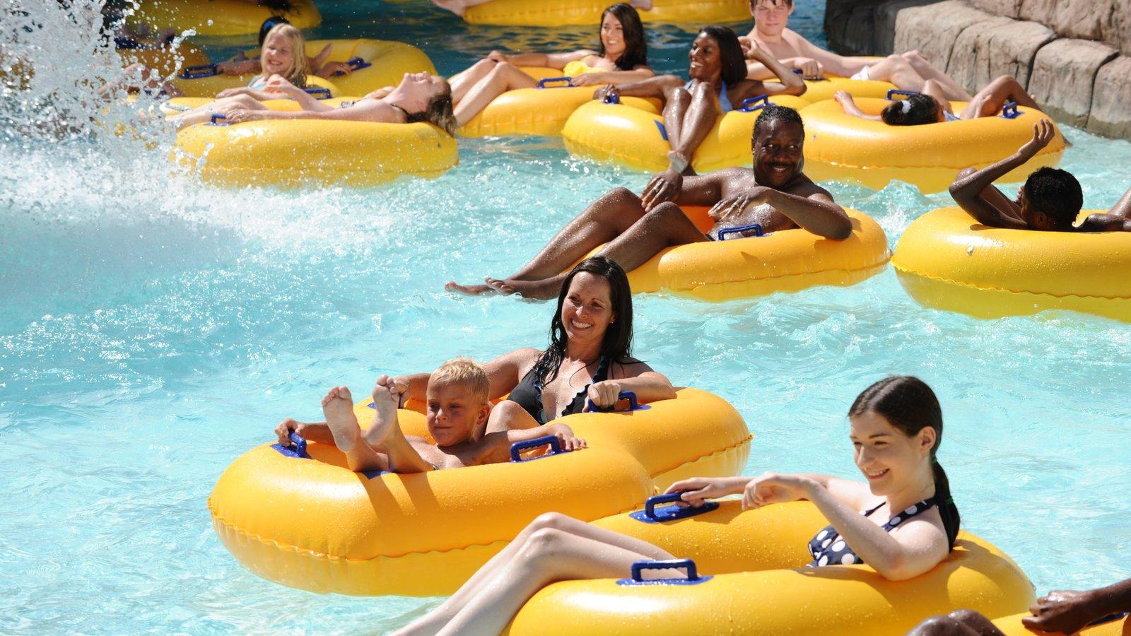 Elitch Gardens Theme Park caracterizando um parque aquático, uma piscina e passeios