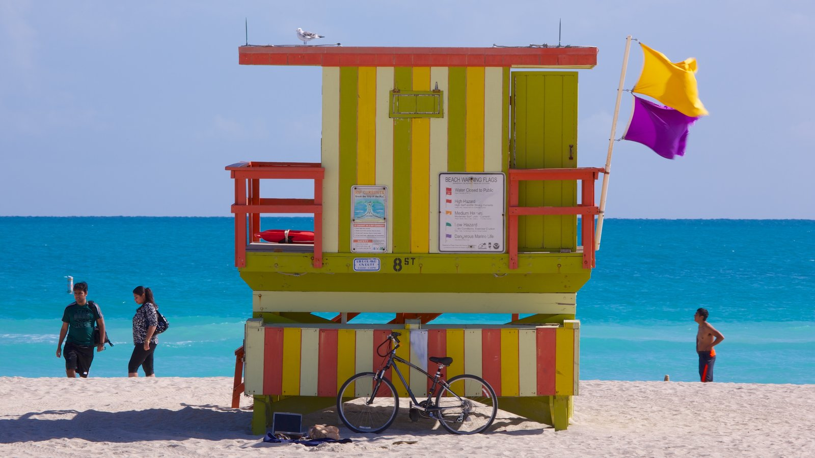 Miami Beach which includes tropical scenes, a sandy beach and landscape views