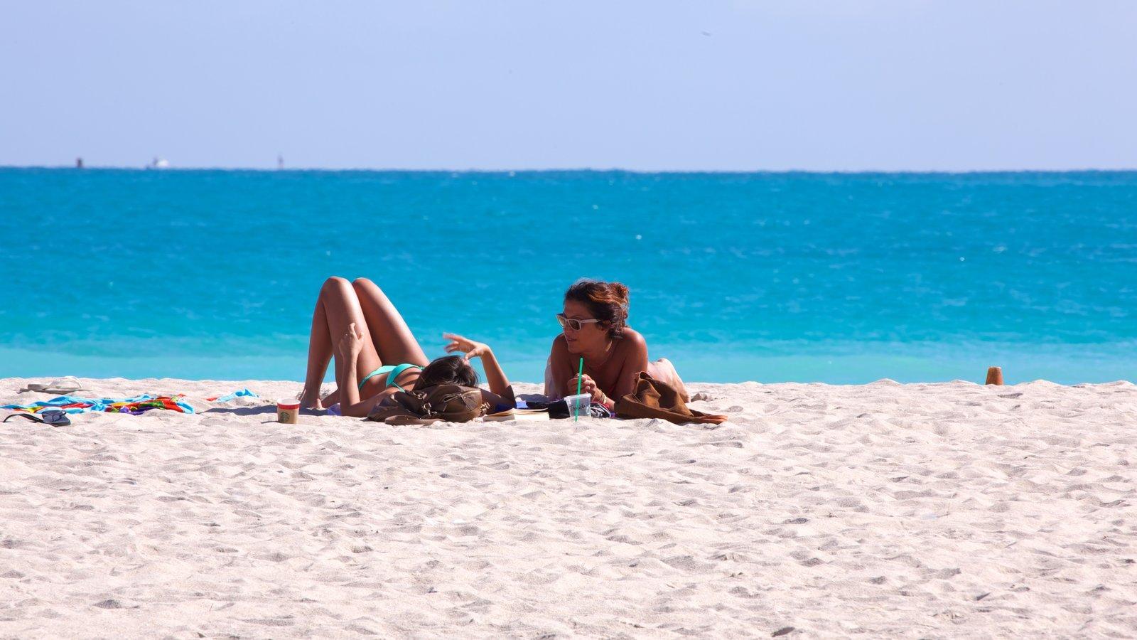 Miami Beach showing a beach, tropical scenes and landscape views