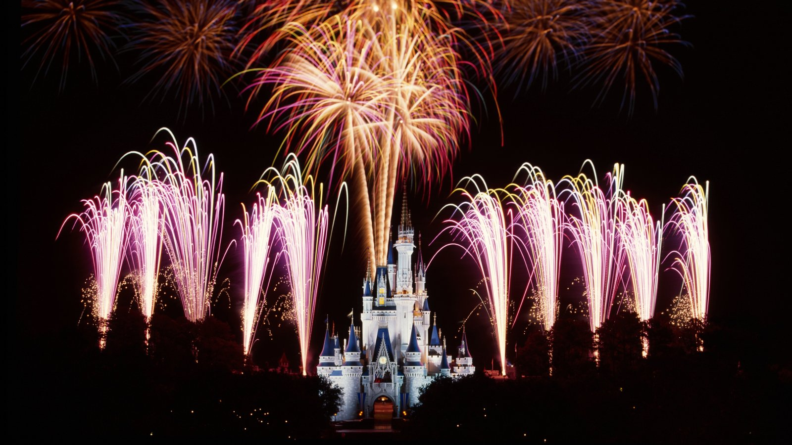 Magic Kingdom® Park showing rides, a castle and night scenes