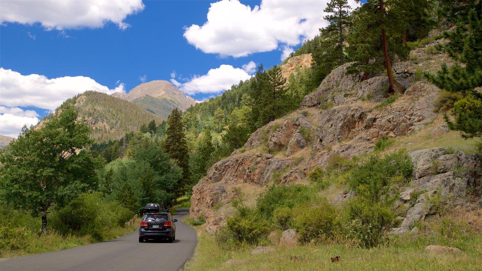 Rocky Mountain National Park que inclui cenas tranquilas