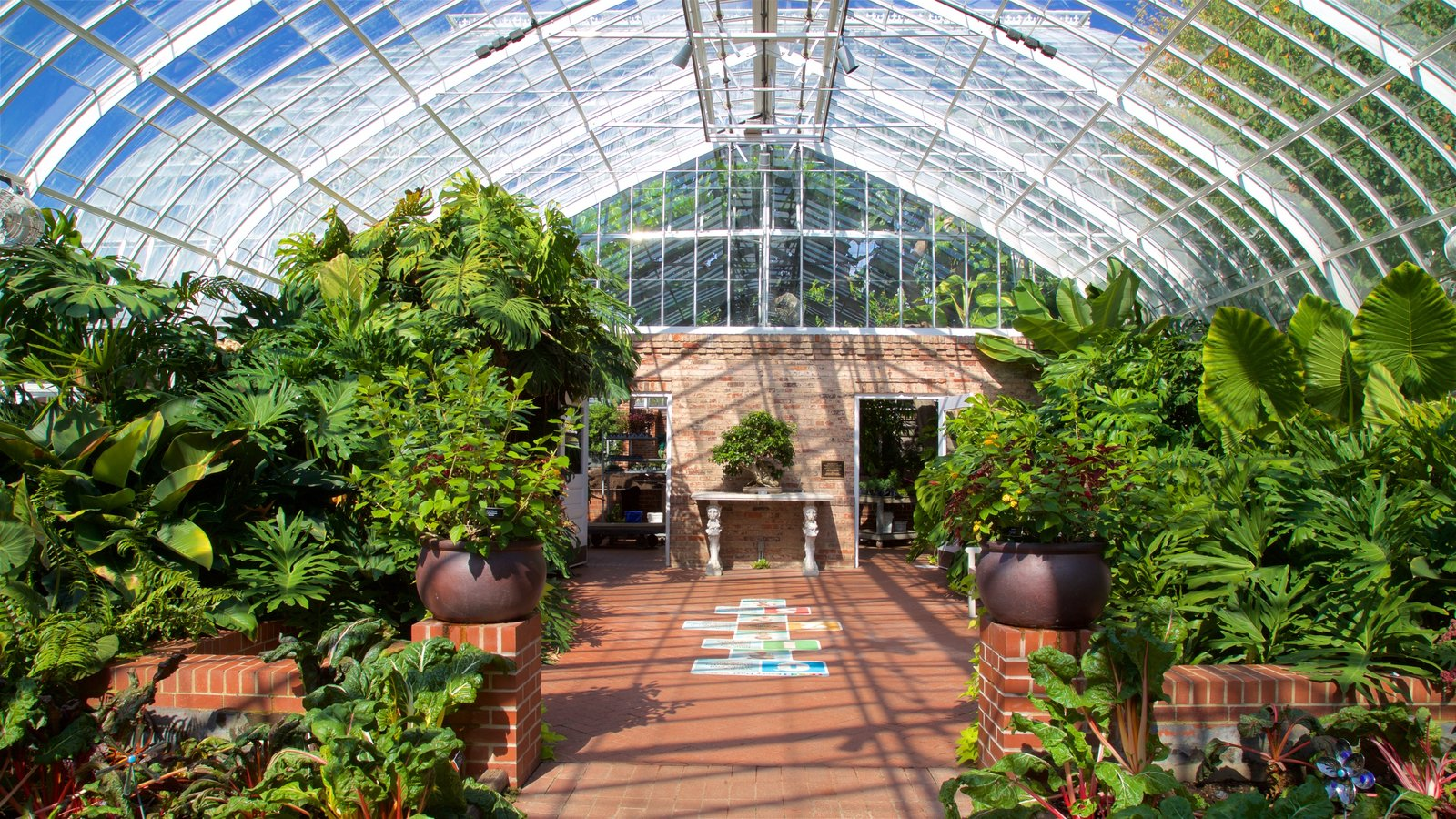 Phipps Conservatory mostrando vistas internas e um jardim