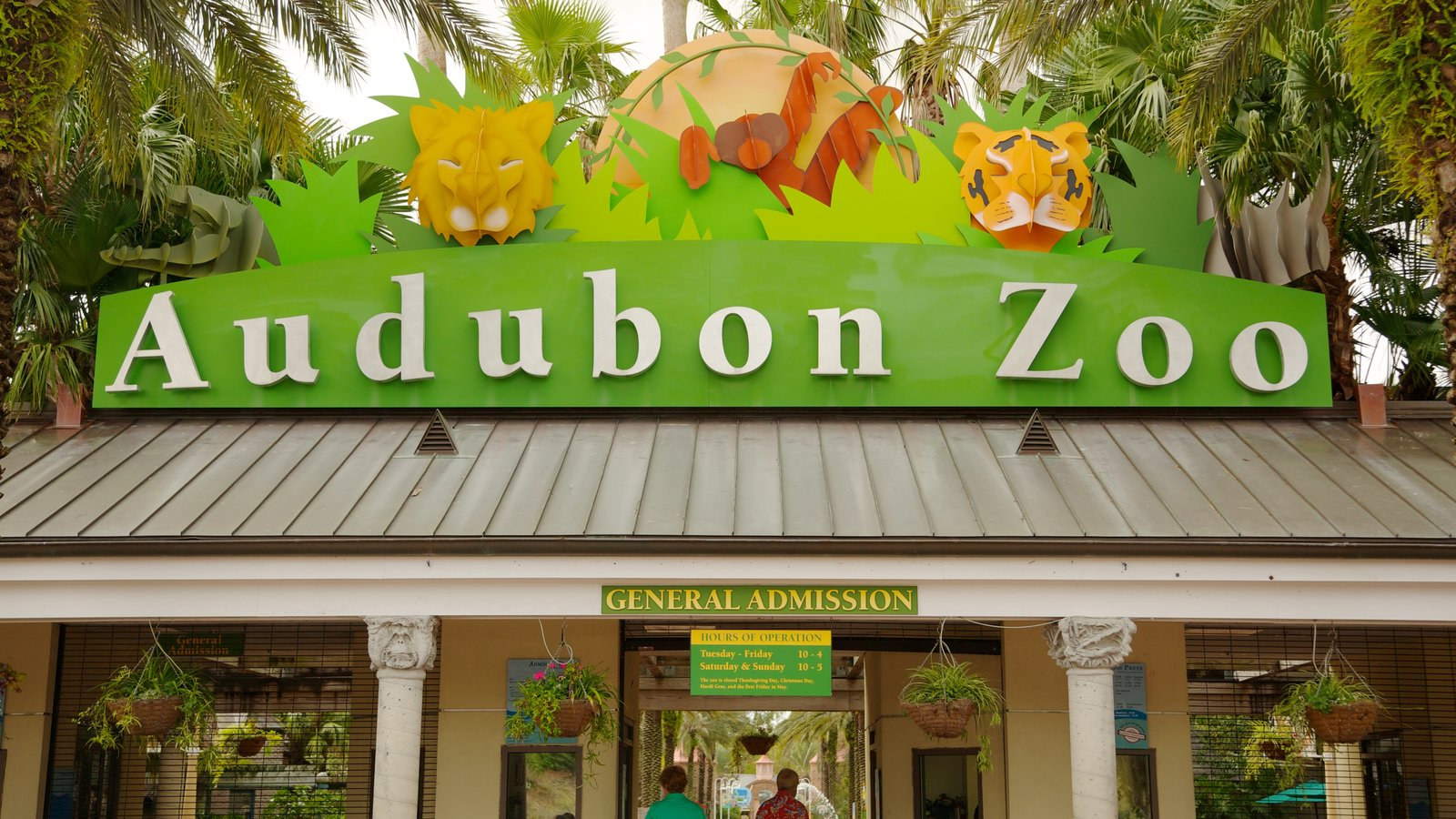the audobon zoo The big cat is believed to have bitten through a steel-cable barrier that forms the roof of its habitat, the zoo's managing director says.