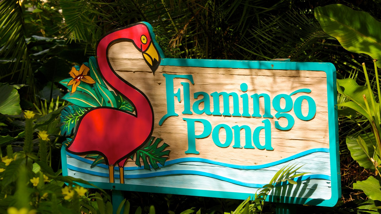Flamingo Gardens showing flowers, zoo animals and signage