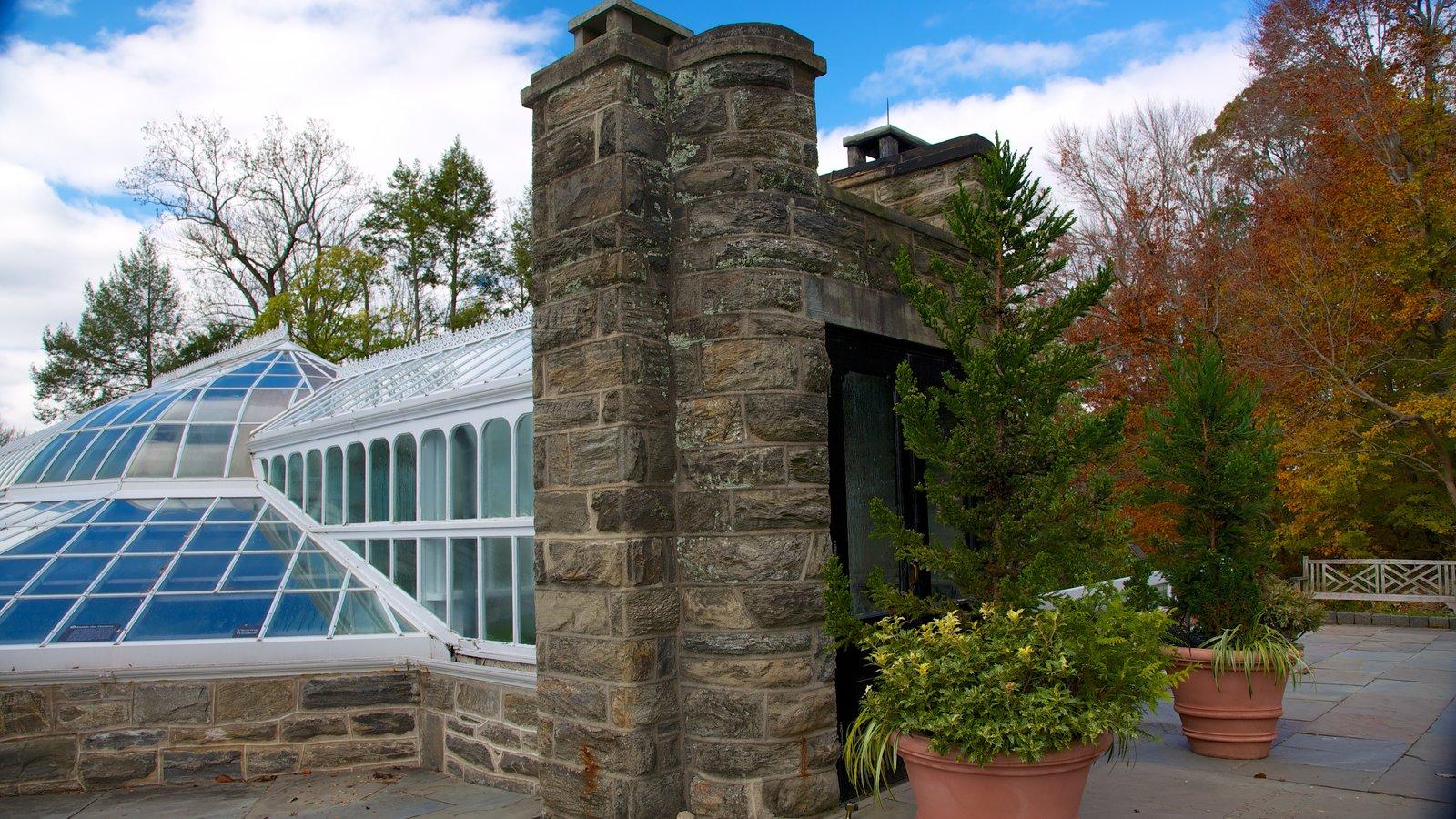 Morris Arboretum que inclui flores e um jardim