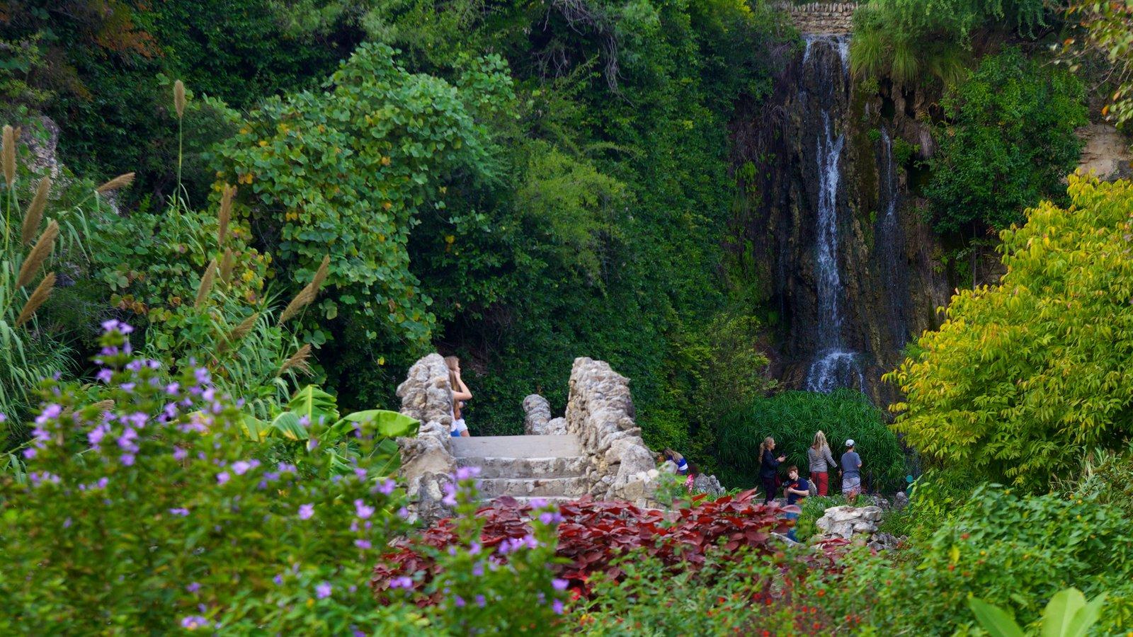 Japanese Tea Gardens caracterizando uma cascata, paisagem e um parque