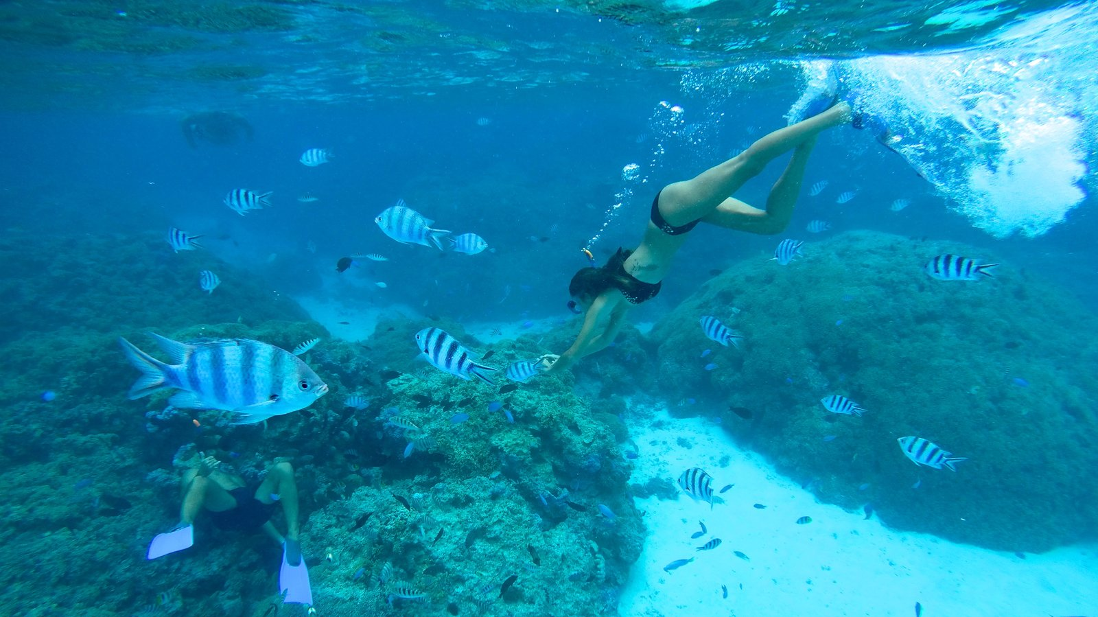 Bora Bora which includes snorkeling and marine life as well as an individual femail