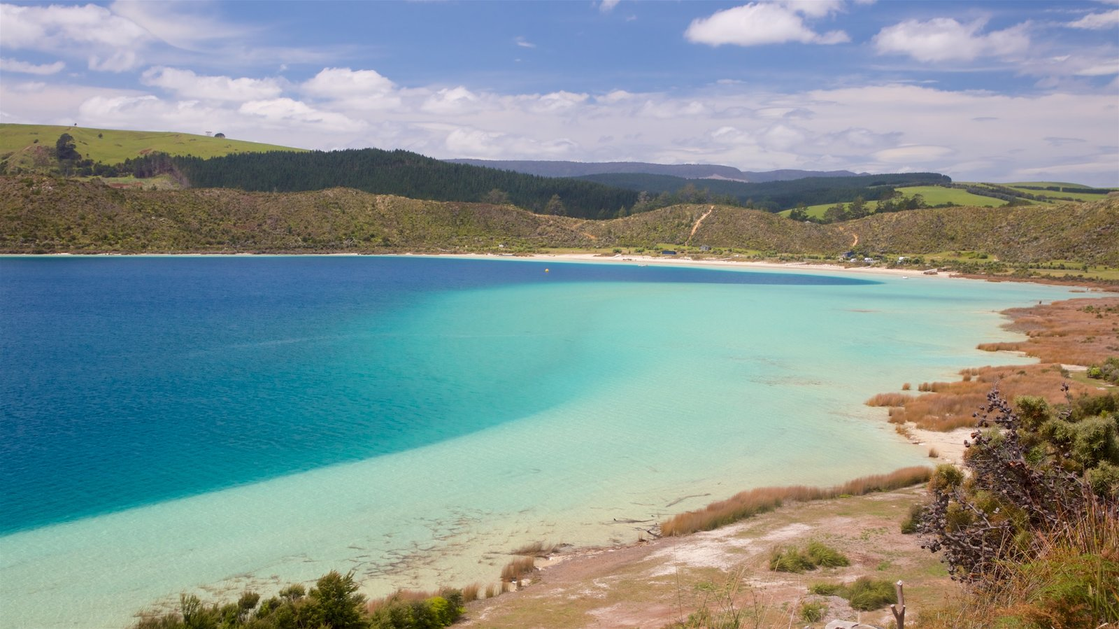 Kai Iwi Lakes featuring a lake or waterhole and tranquil scenes