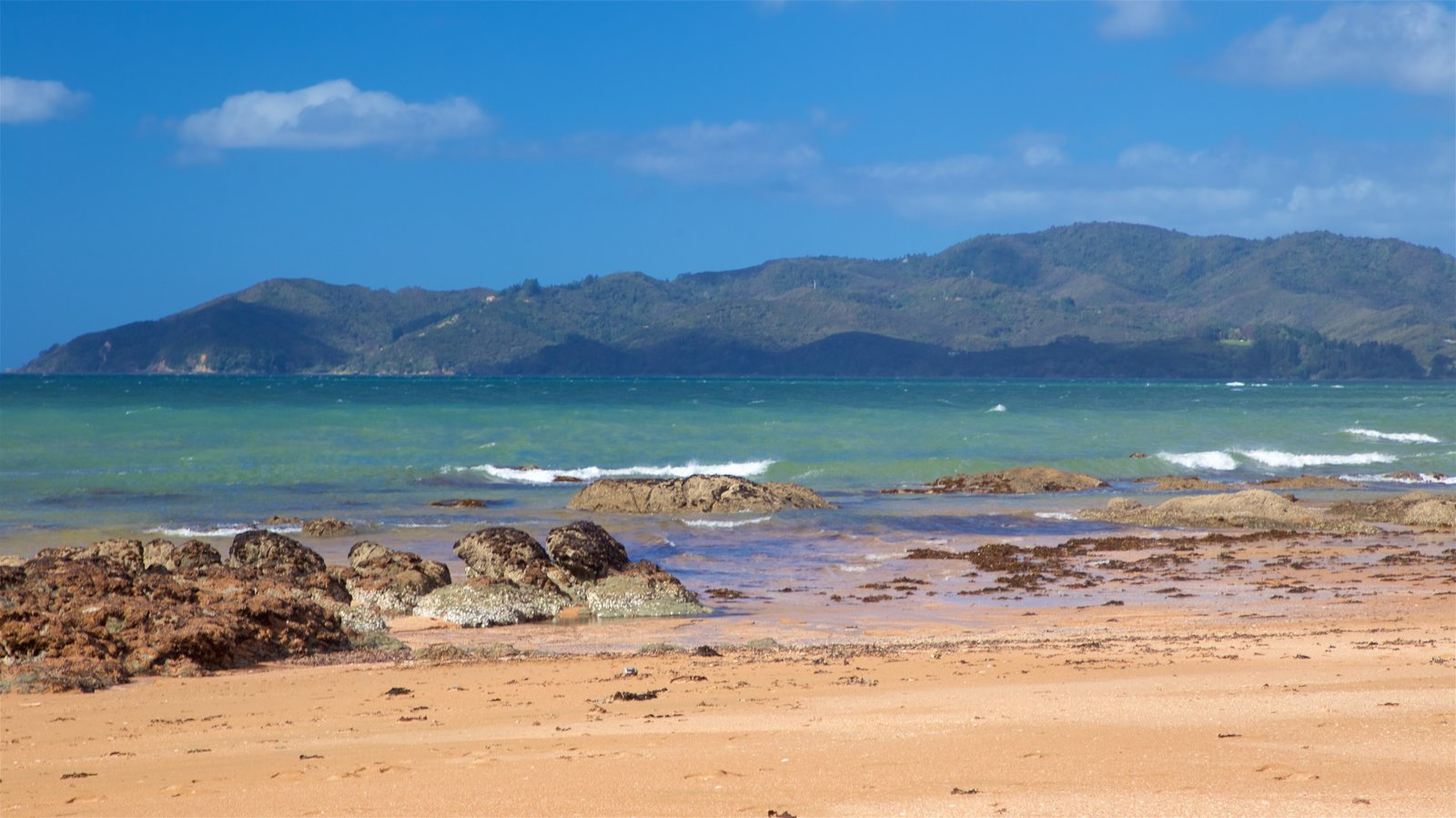 Cable Bay showing general coastal views and a beach