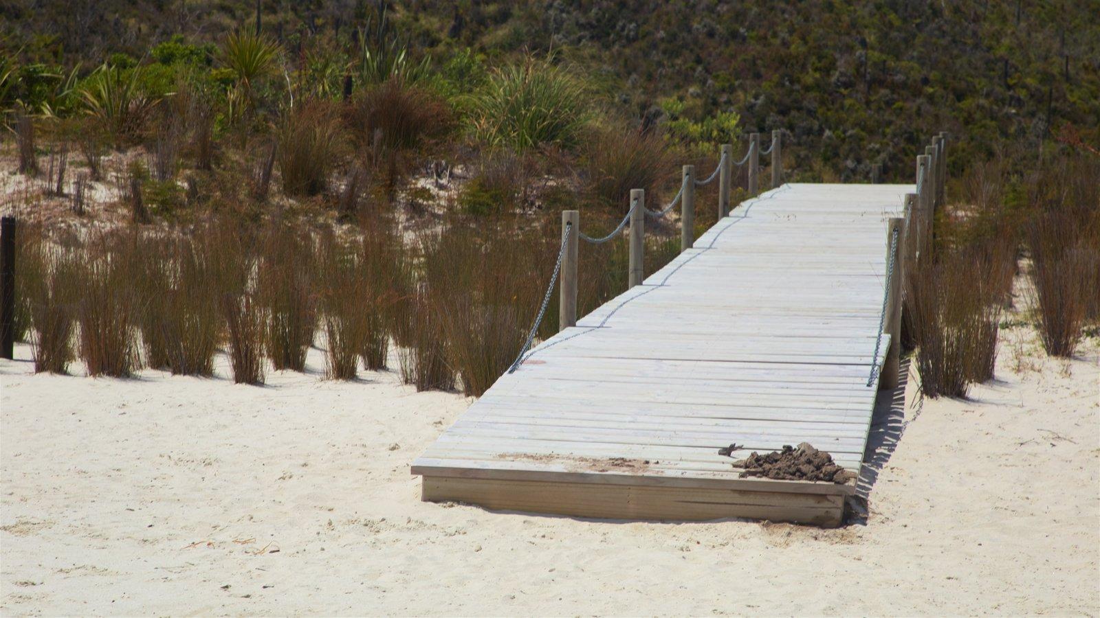Kai Iwi Lakes featuring a sandy beach
