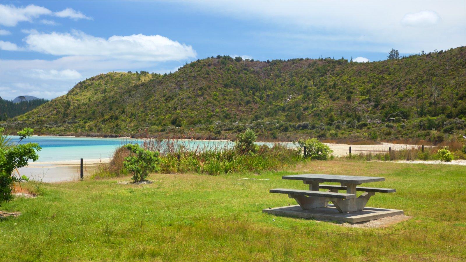 Kai Iwi Lakes showing a garden and a bay or harbor