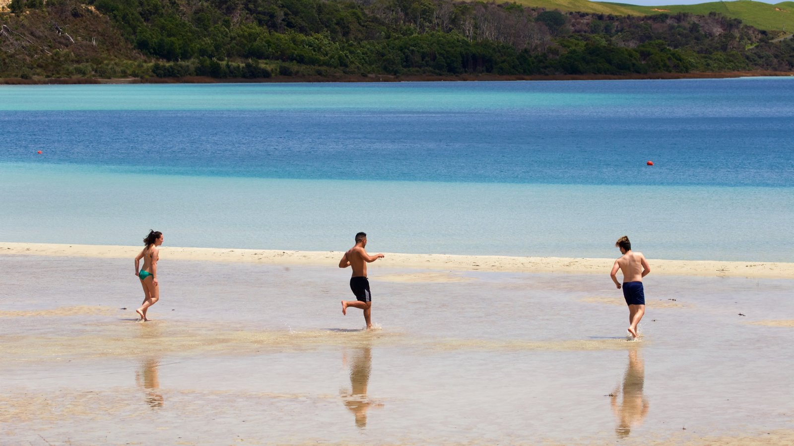 Kai Iwi Lakes showing a sandy beach and a bay or harbor as well as a small group of people