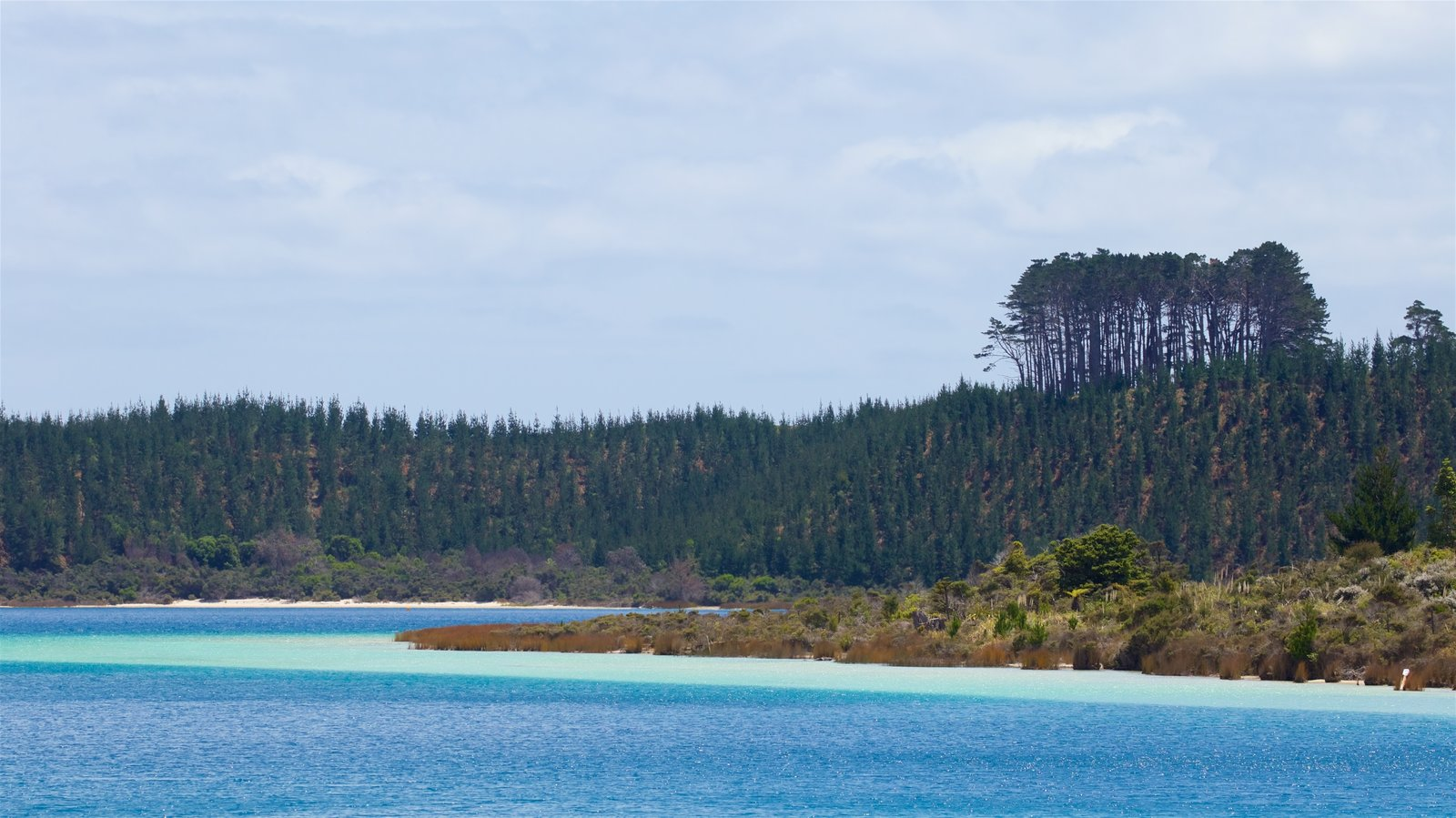 Kai Iwi Lakes featuring a river or creek and tranquil scenes
