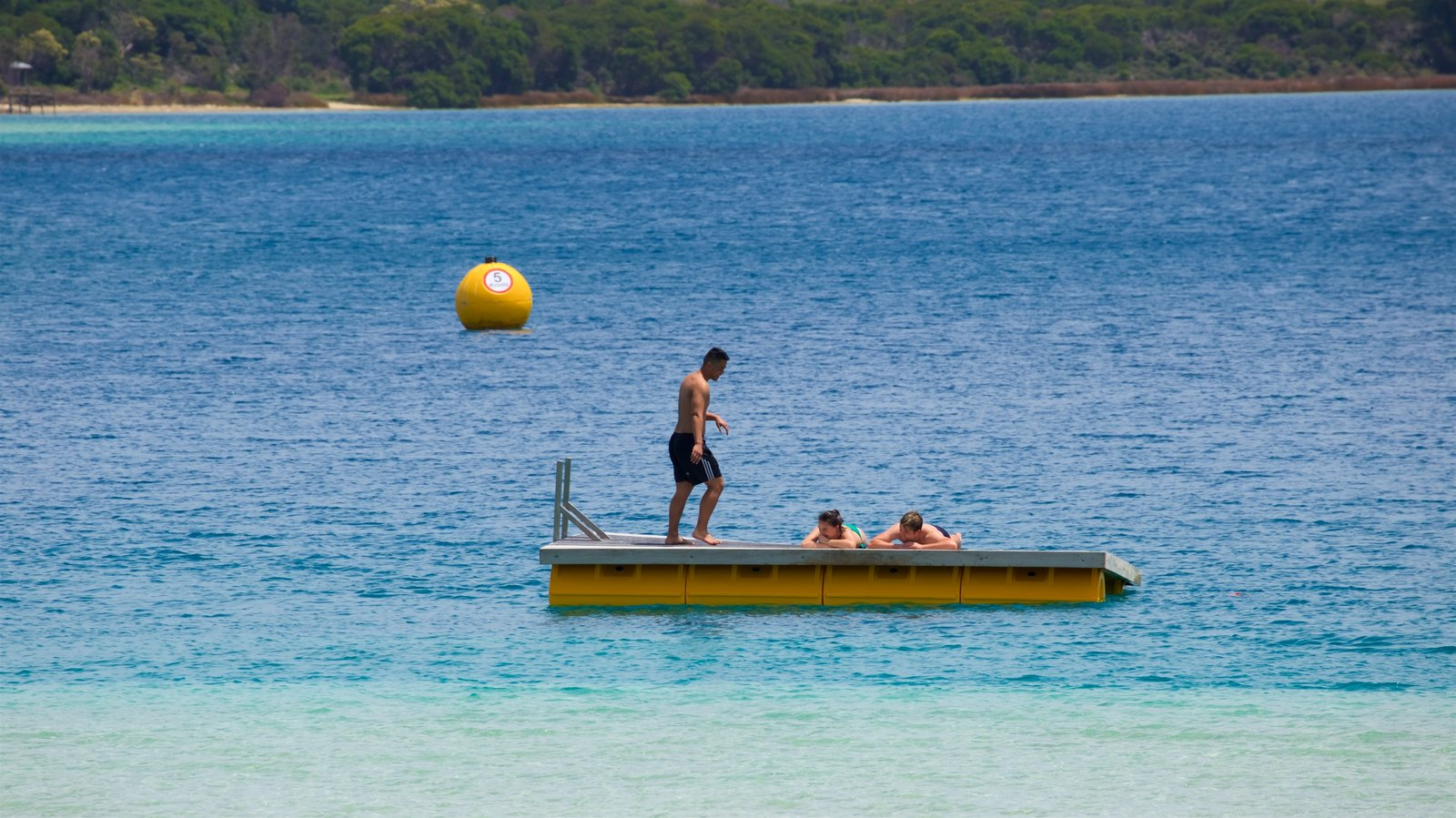 Kai Iwi Lakes which includes a bay or harbor and swimming as well as a small group of people
