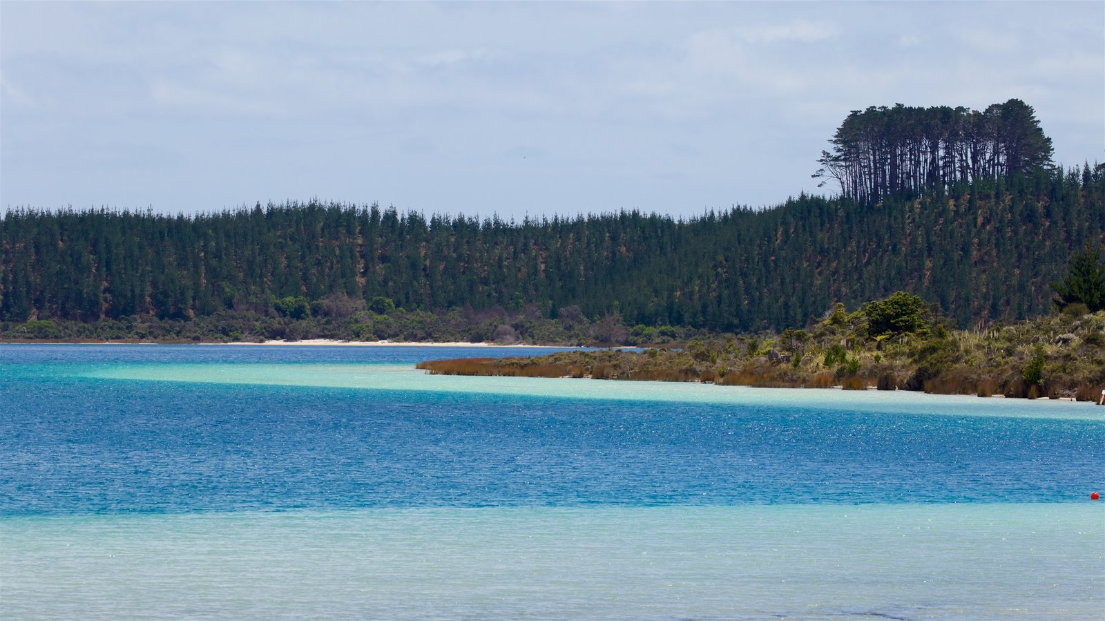 Kai Iwi Lakes which includes a river or creek and tranquil scenes