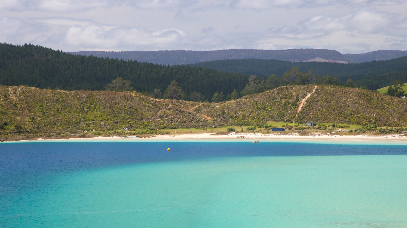 Kai Iwi Lakes showing tranquil scenes and a bay or harbor