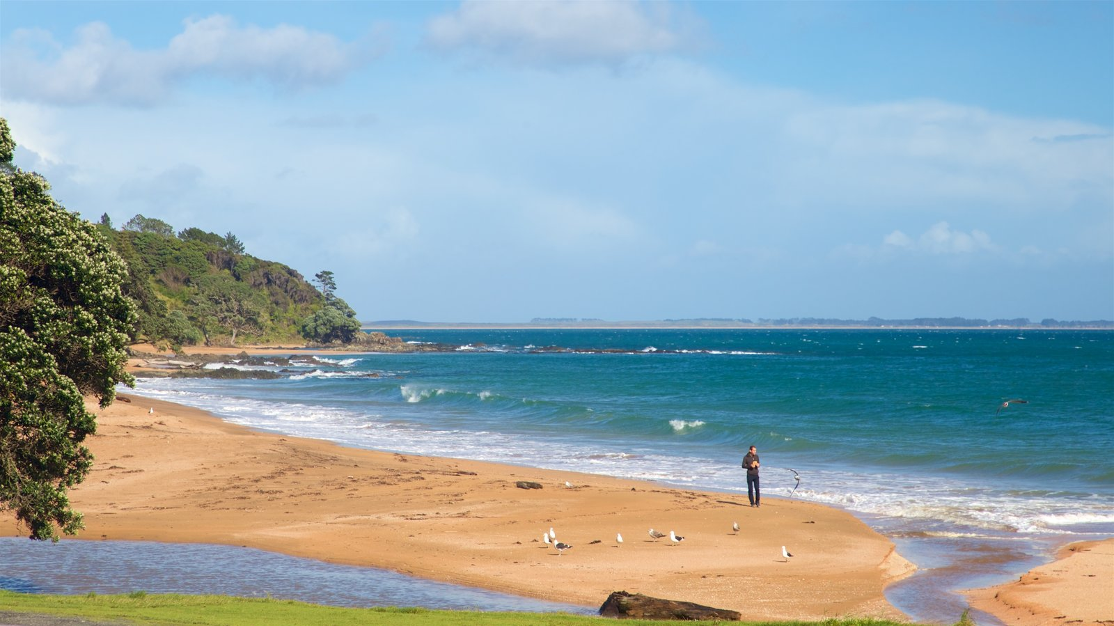 Cable Bay which includes a beach and general coastal views as well as an individual male