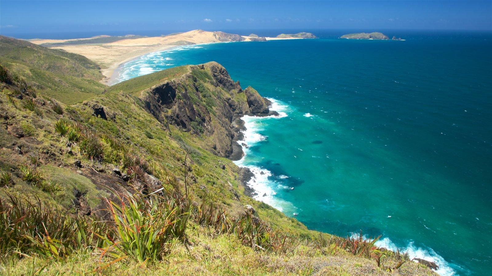 Cape Reinga ofreciendo costa escarpada y vistas generales de la costa