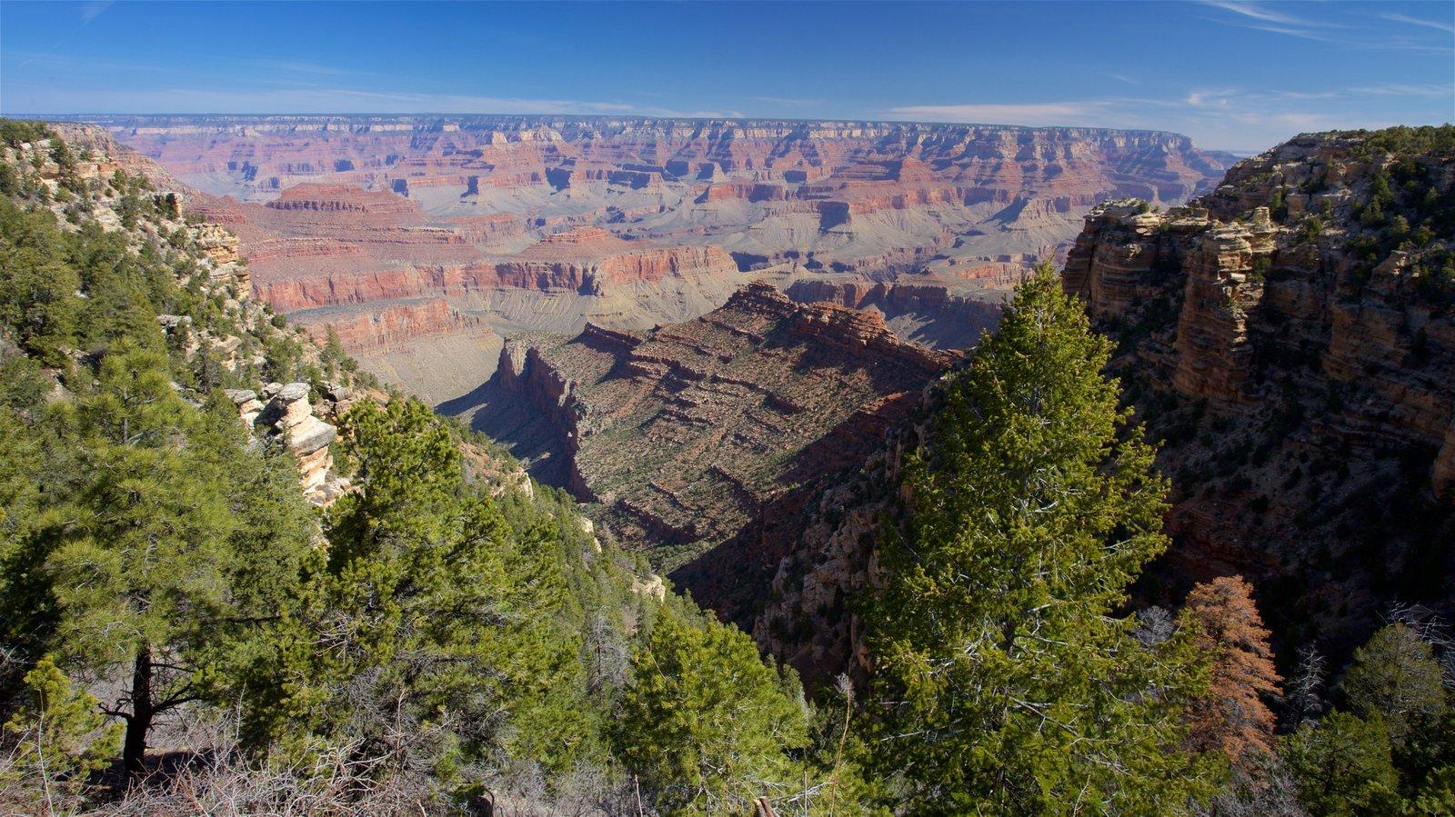 Grand Canyon mostrando un barranco o cañón y escenas tranquilas