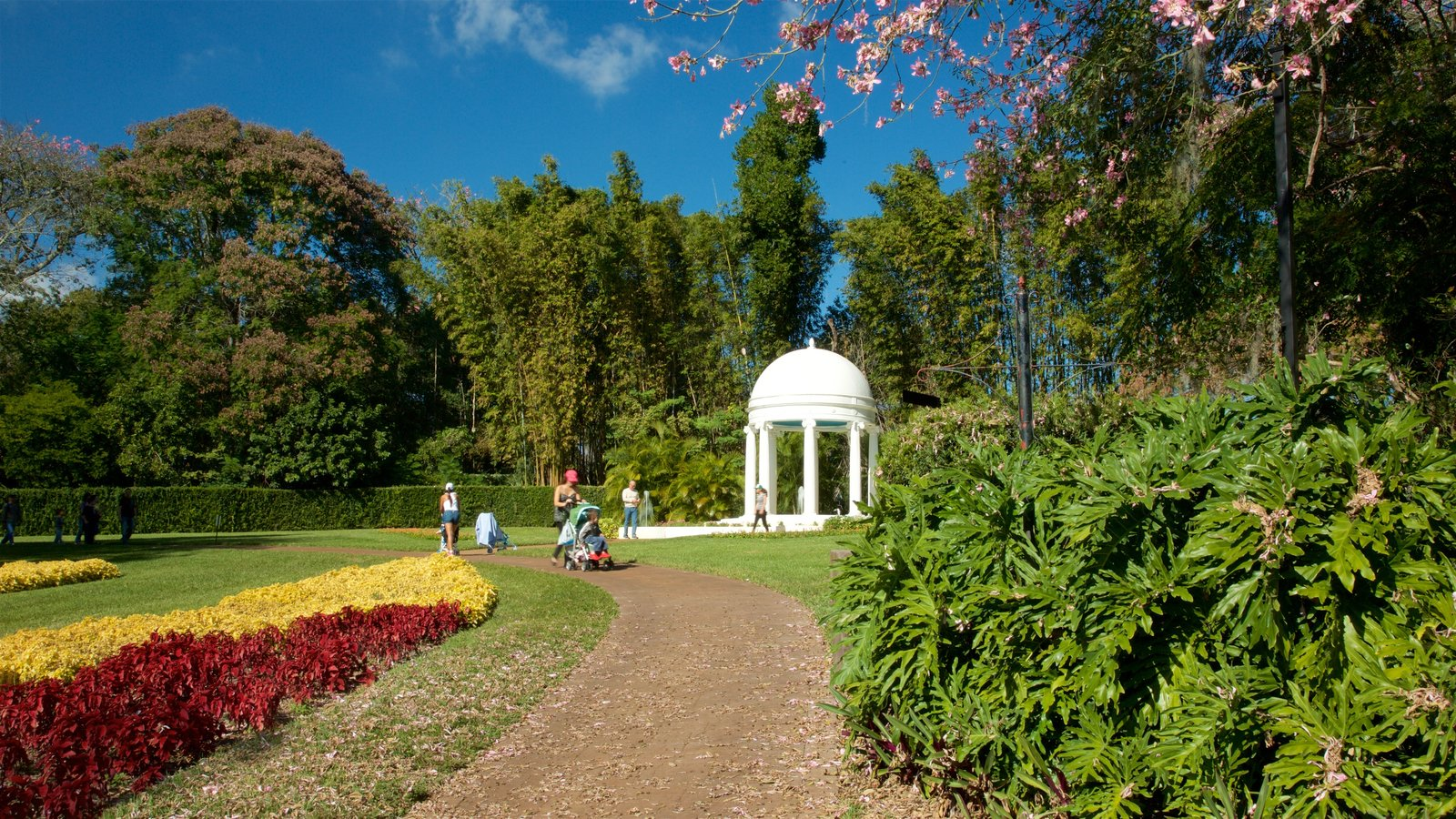 gardens u0026 parks pictures view images of legoland florida