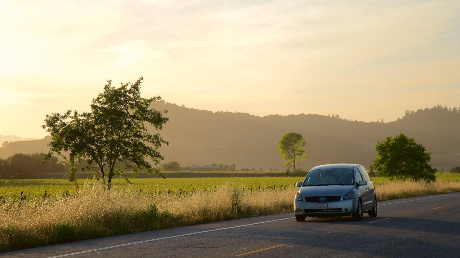 Napa Valley ofreciendo vistas de paisajes, una puesta de sol y escenas tranquilas