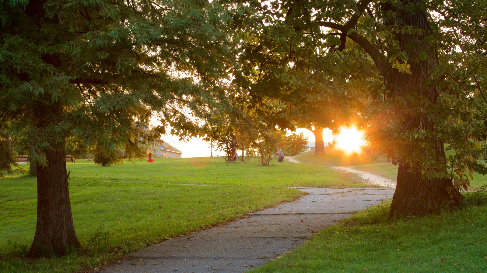 Patterson Park showing a garden and a sunset