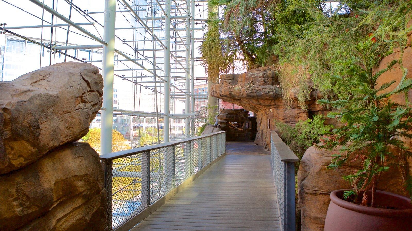 National Aquarium in Baltimore showing interior views and a garden