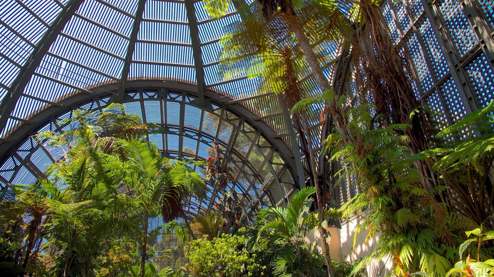 San Diego mostrando um jardim e vistas internas