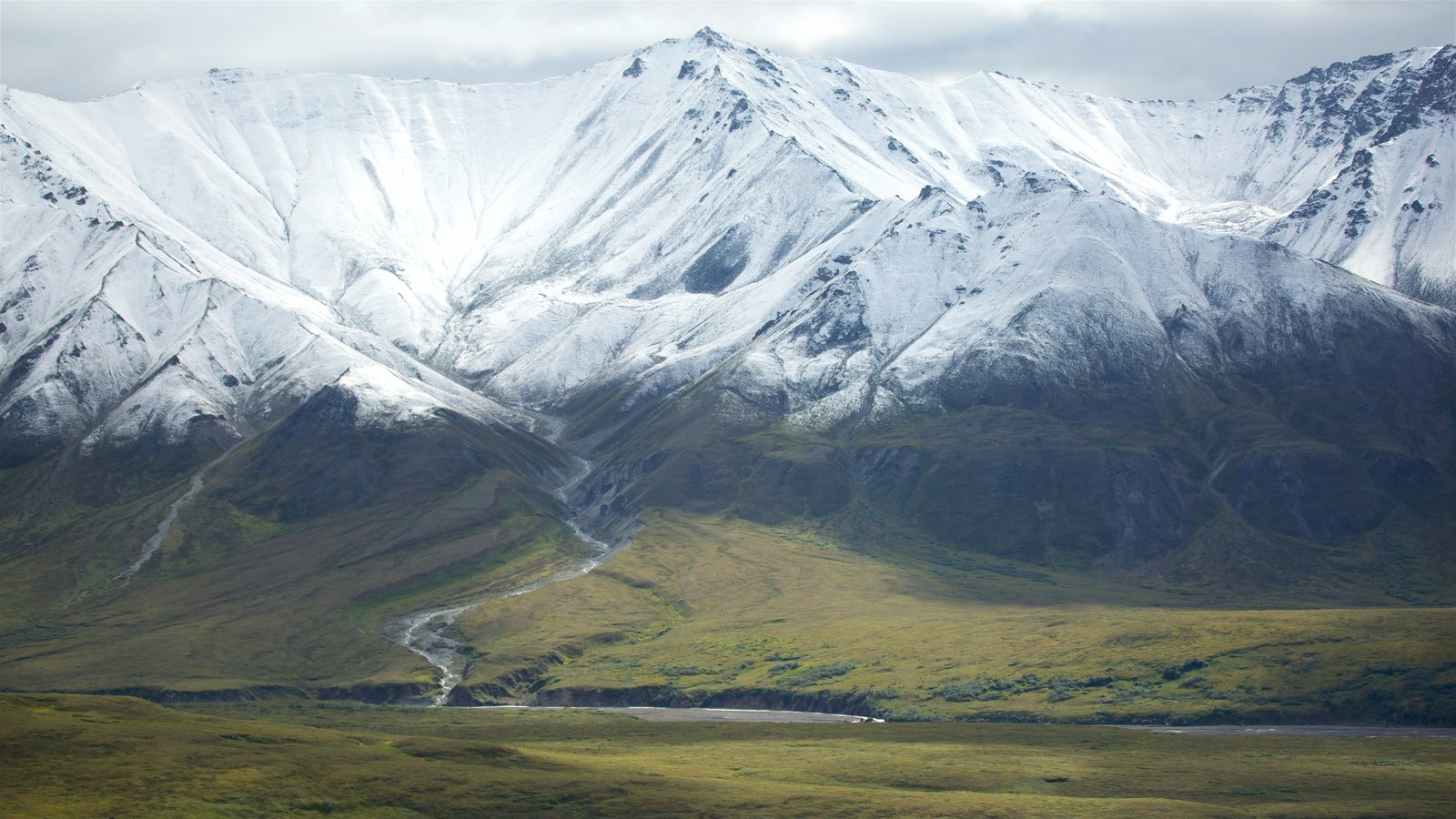 Denali National Park which includes tranquil scenes, snow and landscape views