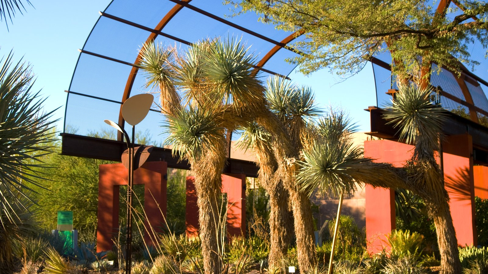 Gardens & Parks Pictures: View Images of Phoenix