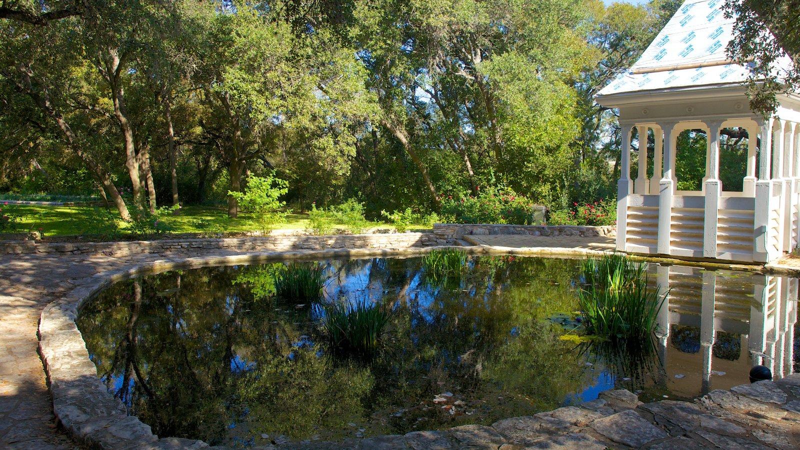Charmant Zilker Botanical Garden Showing A Pond And A Garden