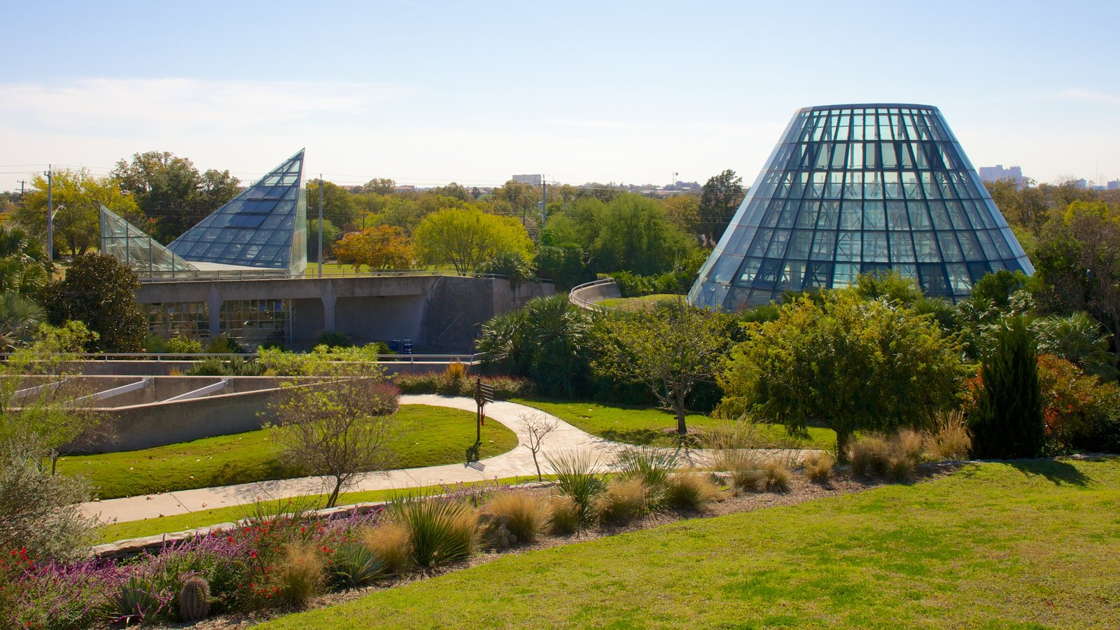 San Antonio Botanical Gardens que inclui um jardim e arquitetura moderna