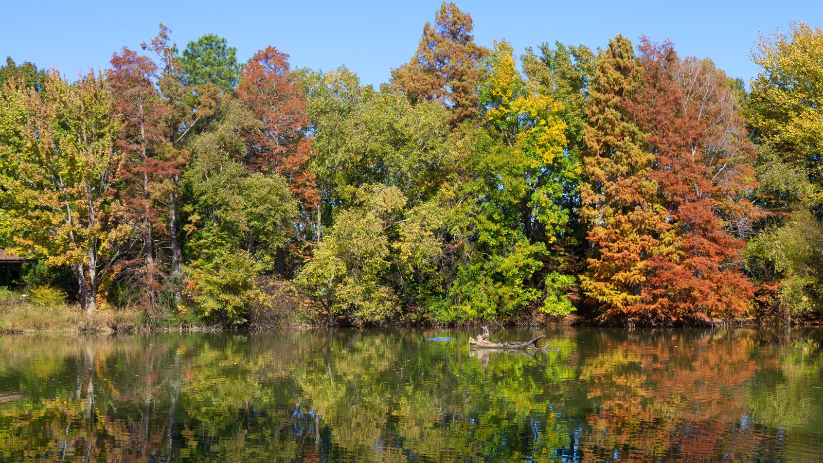 Nature Pictures: View Images of San Antonio