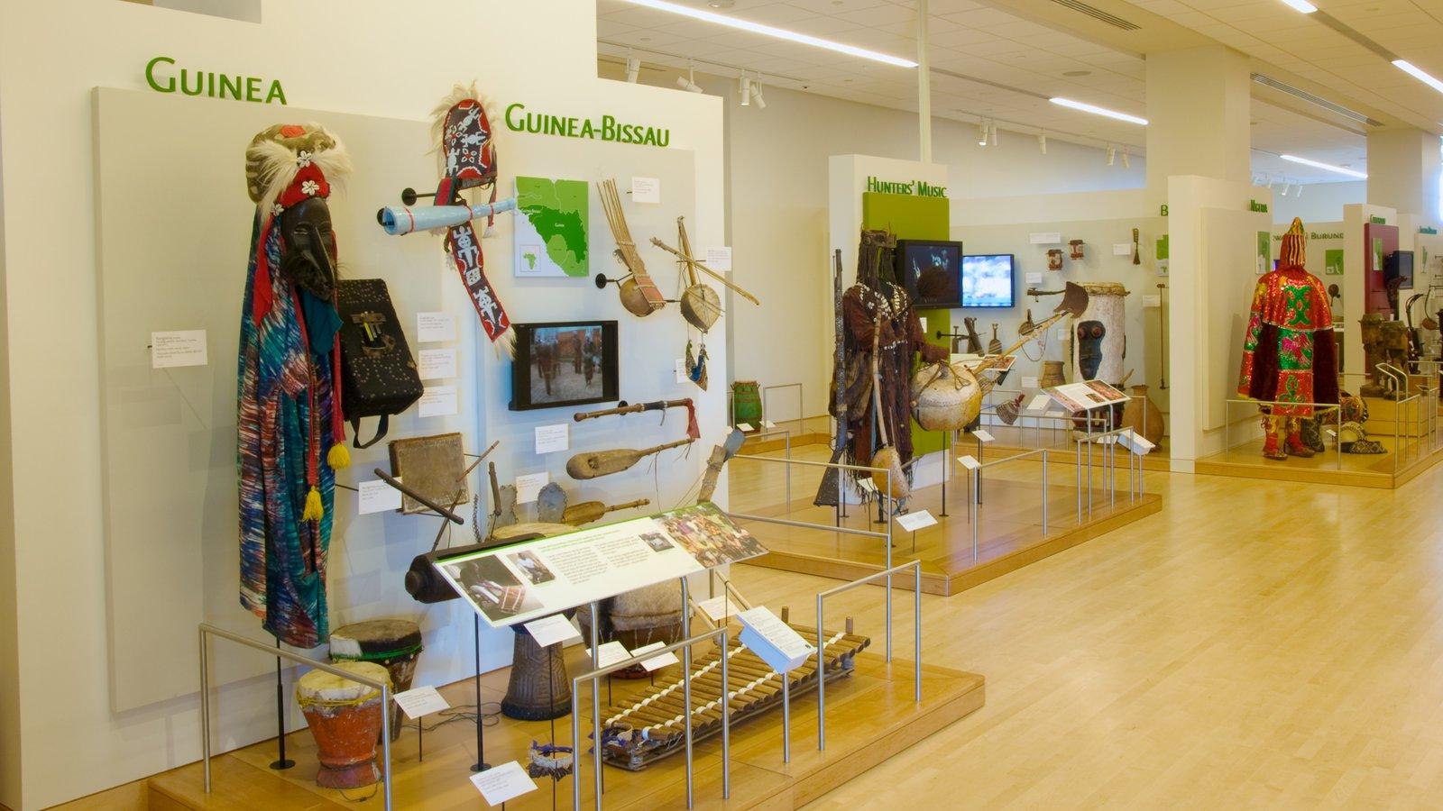 Museu dos Instrumentos Musicais caracterizando vistas internas e sinalização