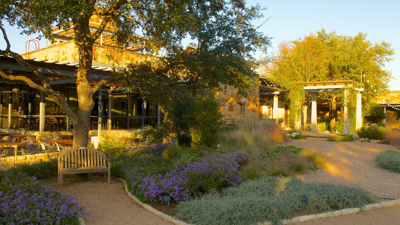 Lady Bird Johnson Wildflower Center Pictures: View Photos & Images ...