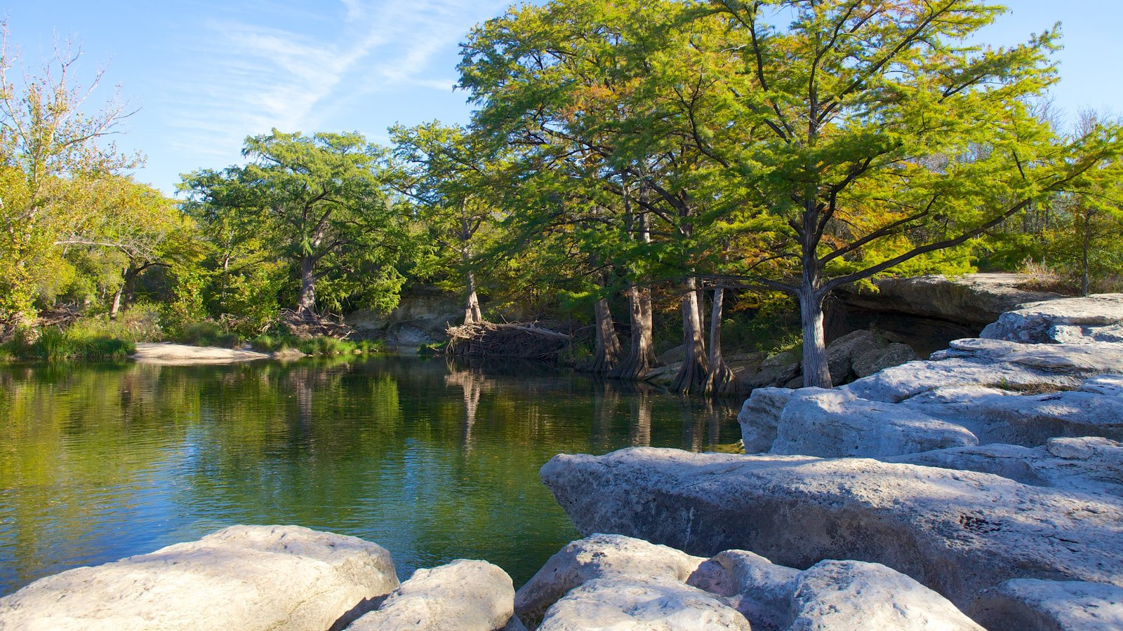 McKinney Falls State Park which includes forest scenes, a park and landscape views