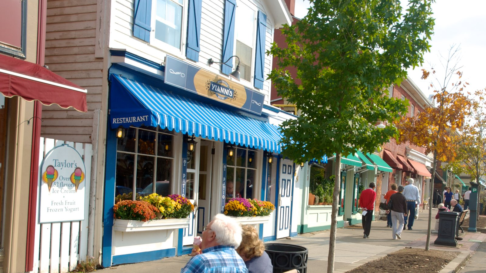 Niagara-on-the-Lake mostrando uma cidade pequena ou vila e cenas de rua