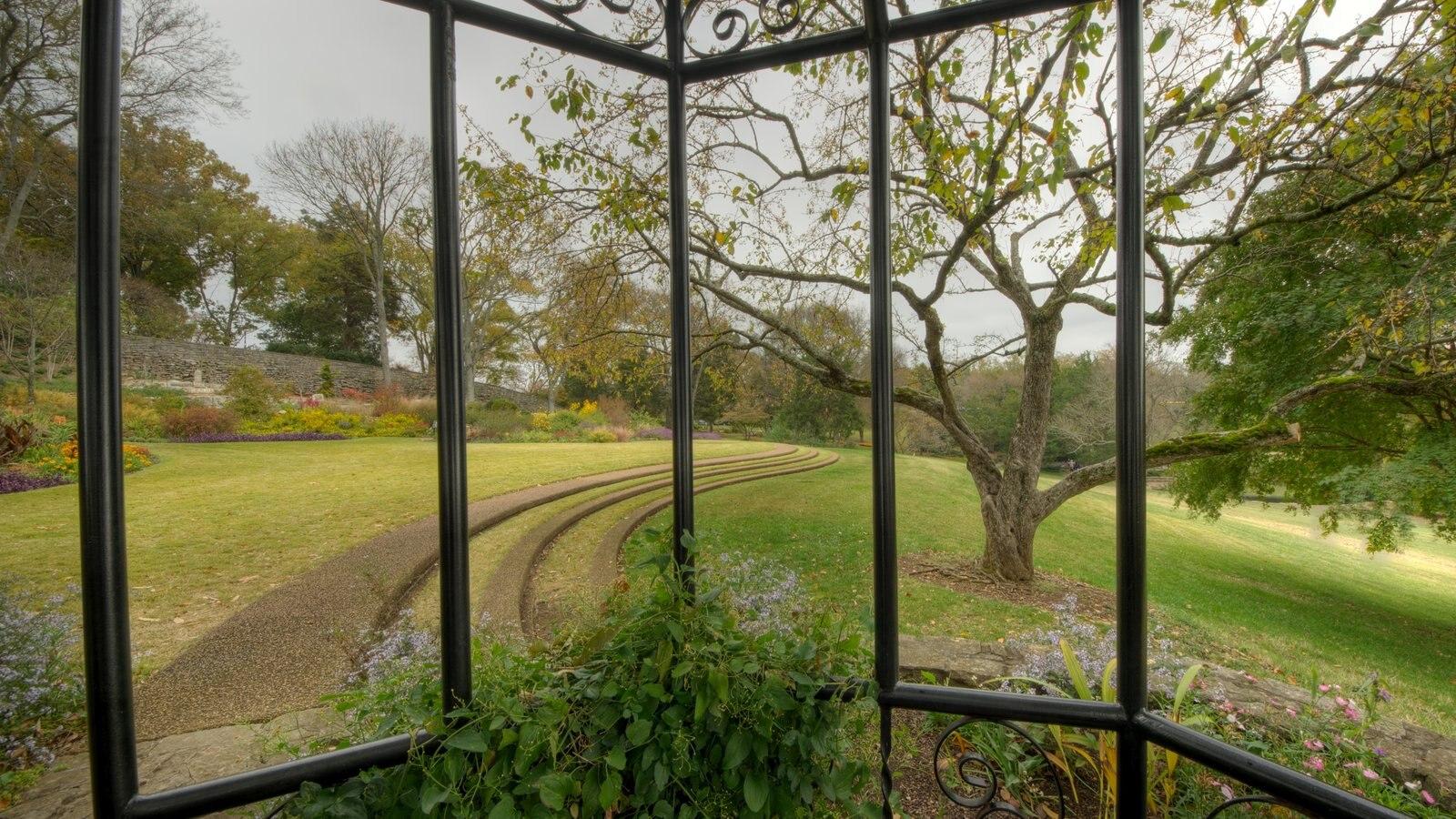 Cheekwood Botanical Gardens and Museum of Art que incluye escenas tranquilas y un jardín