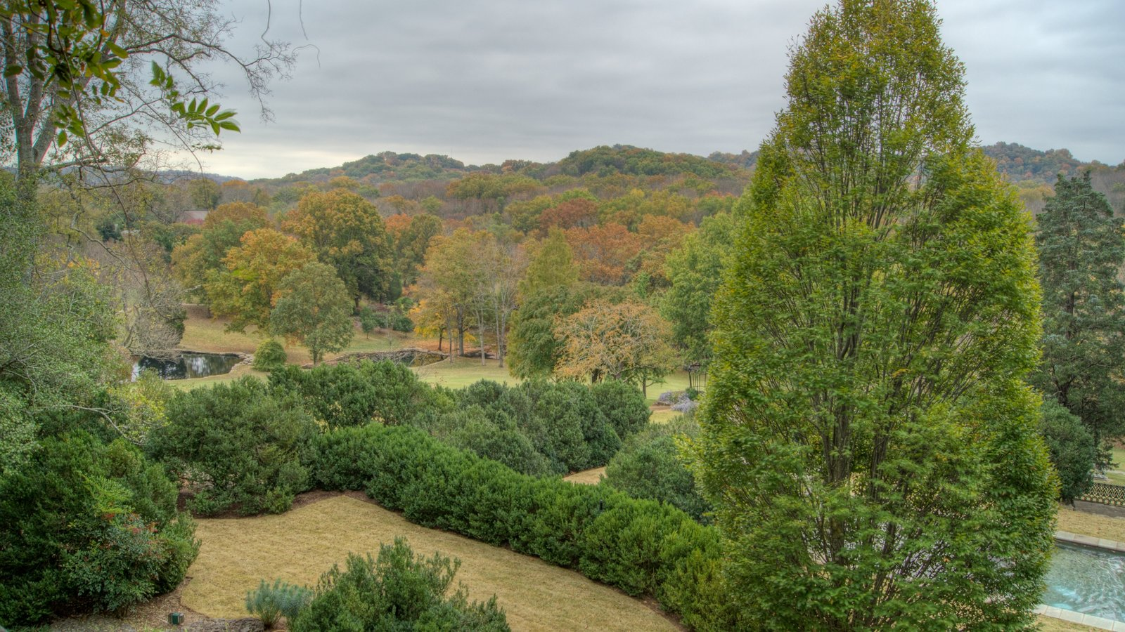 Cheekwood Botanical Gardens and Museum of Art featuring a garden, forests and landscape views