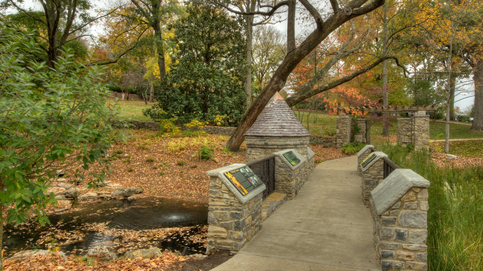 Cheekwood Botanical Gardens and Museum of Art featuring a park and fall colors