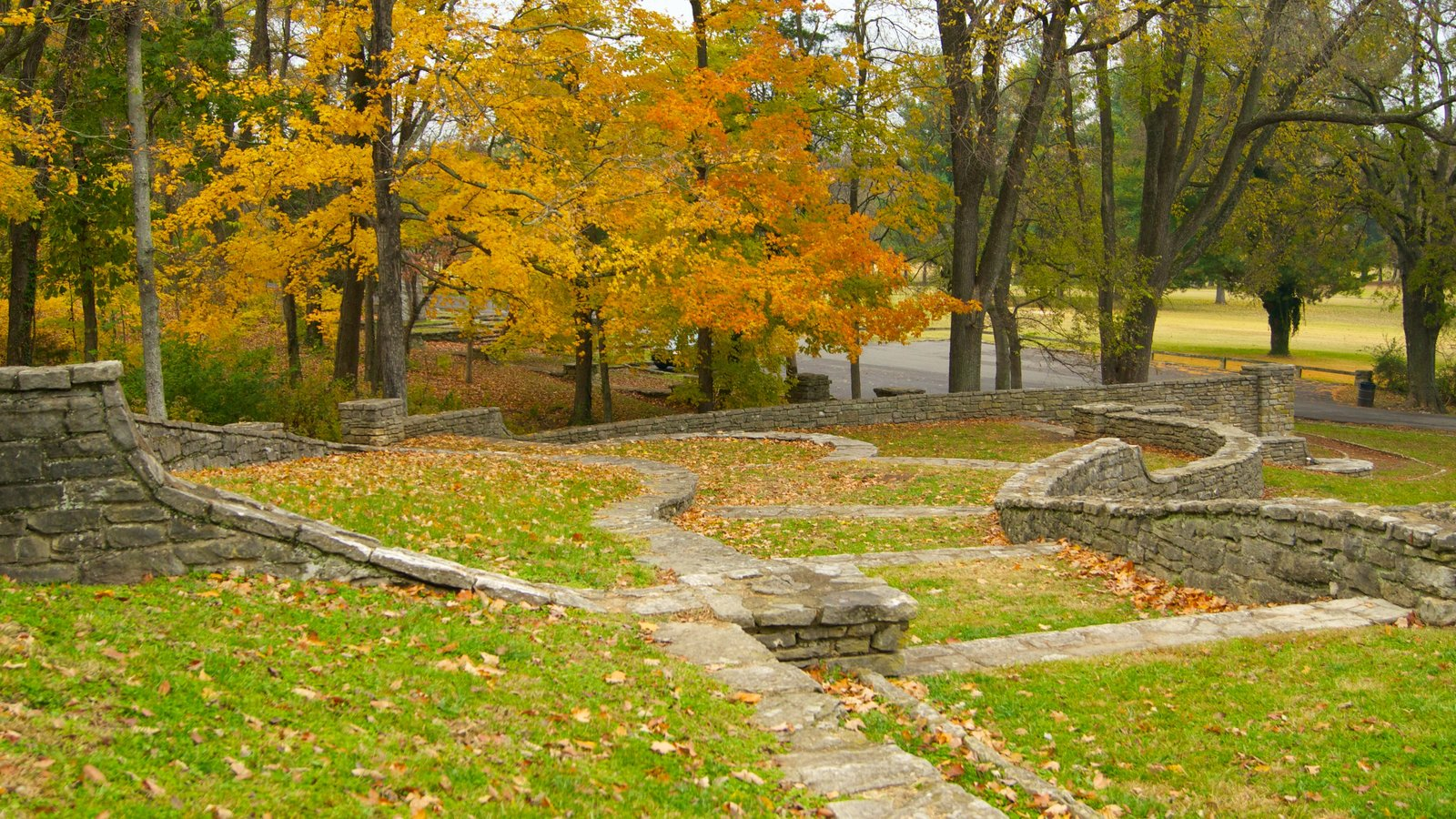 Edwin and Percy Warner Parks featuring fall colors, a garden and landscape views