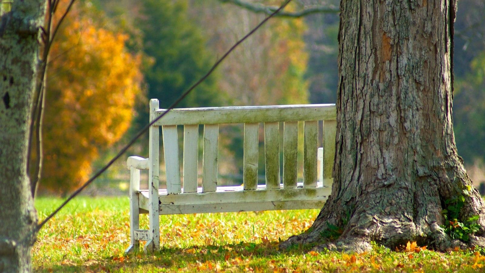 The Hermitage que incluye los colores del otoño y un jardín