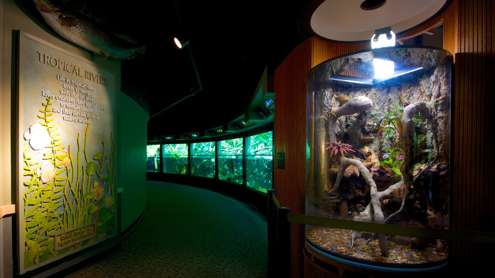 Nashville Zoo featuring zoo animals, signage and interior views