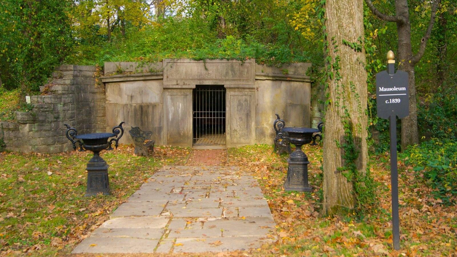 Belle Meade Plantation que incluye los colores del otoño y un jardín