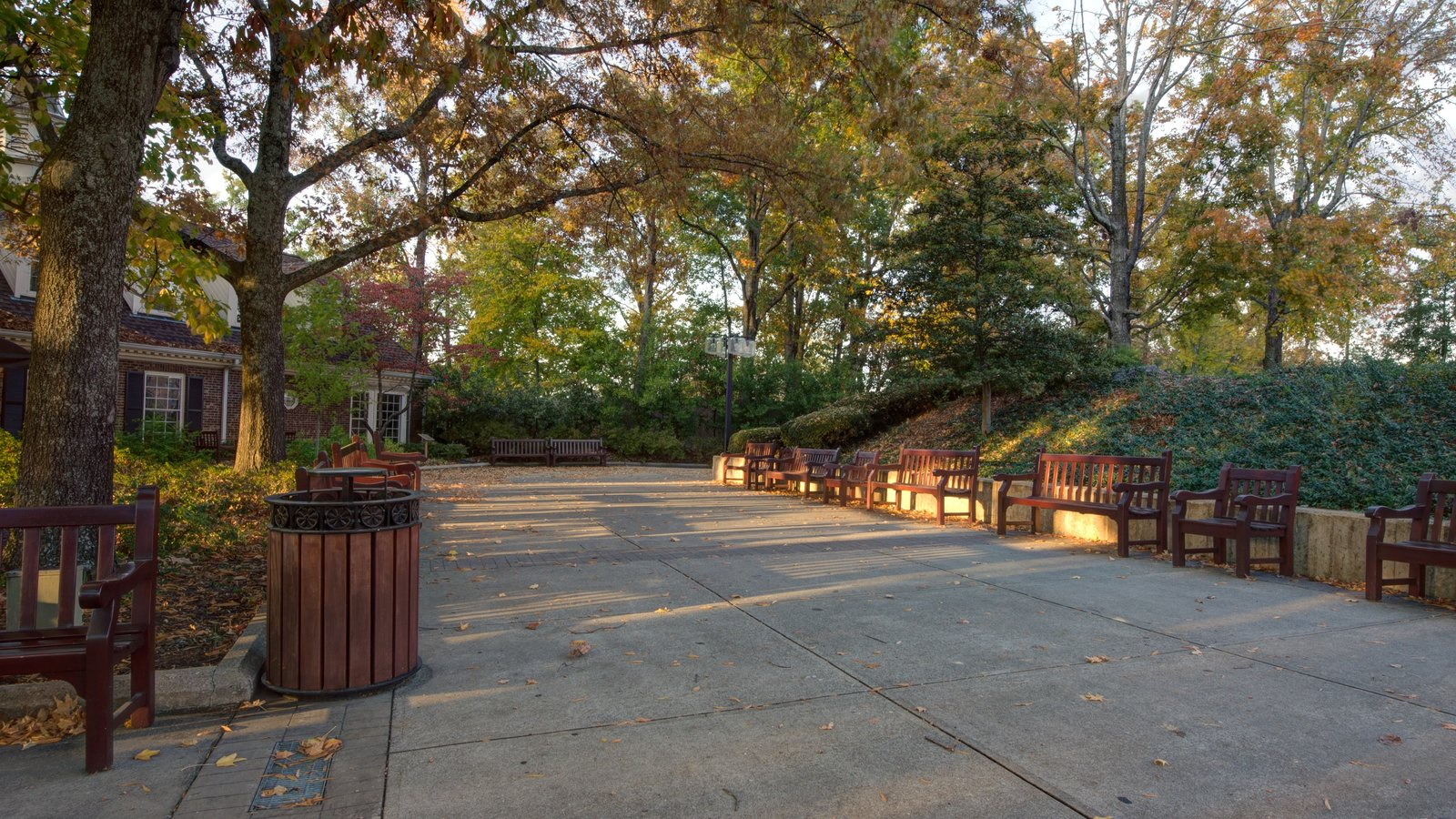 Grand Ole Opry showing a park