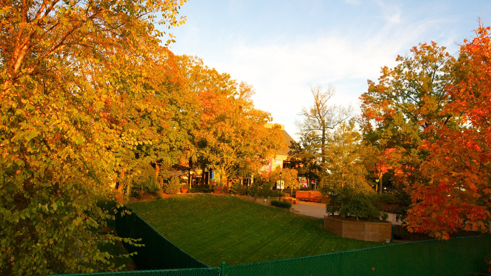 Grand Ole Opry which includes fall colors and a park
