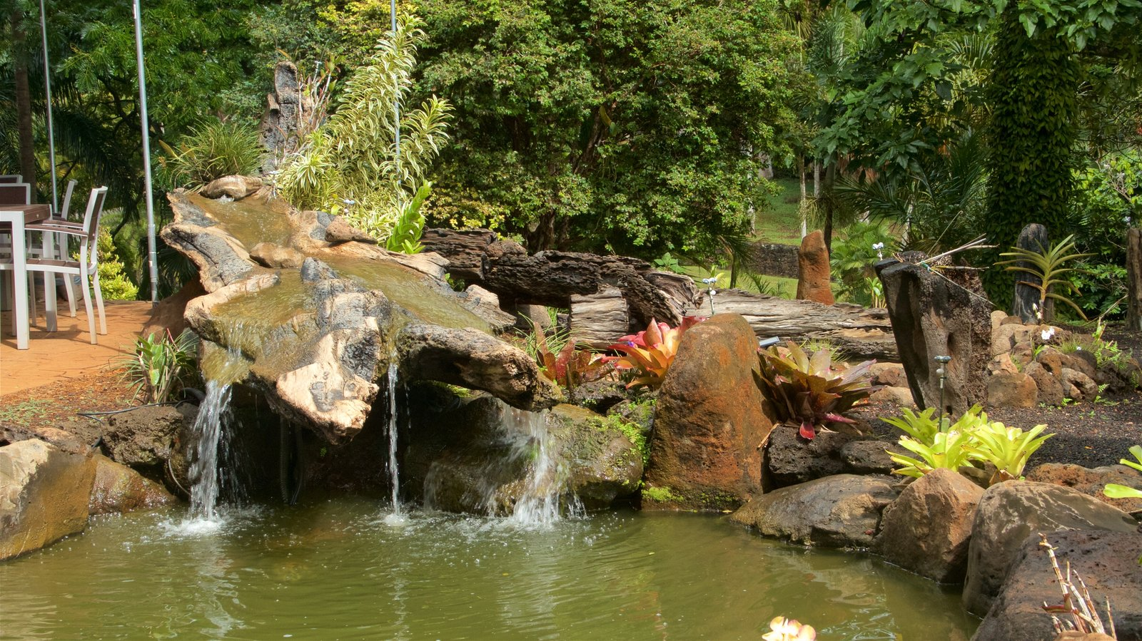 McBryde Garden Pictures: View Photos & Images of McBryde Garden
