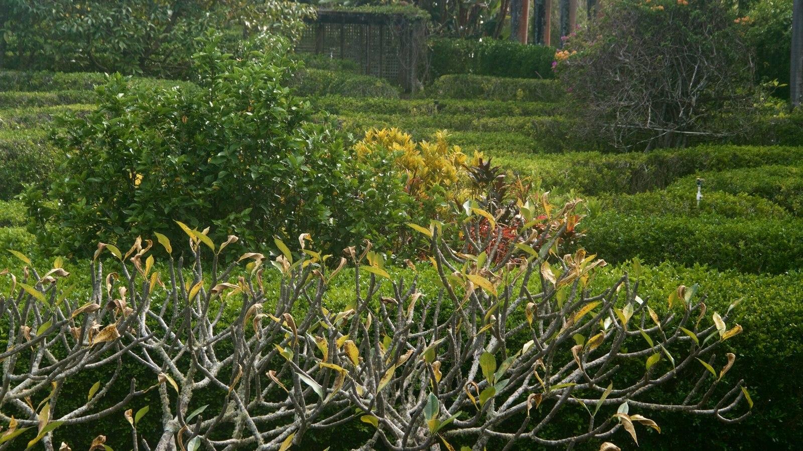 Na Aina Kai Botanical Gardens Featuring A Park